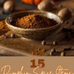 pumpkin spice items to buy