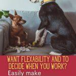 make money dog sitting