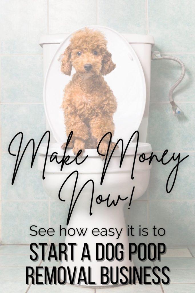 dog poop removal business